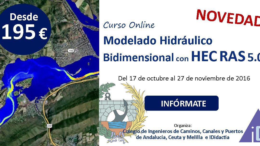 Modelado Hidráulico Bidimensional con HEC RAS 5.0
