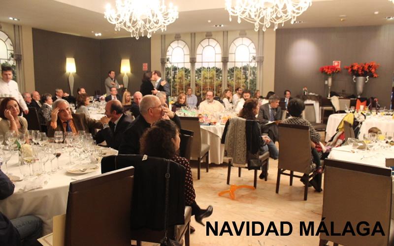 Málaga innovó este año su cita por Navidad con actividades para los más pequeños de la familia