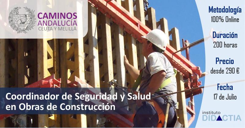 IDidactia. Coordinador de Seguridad y Salud en Obras de Construcción