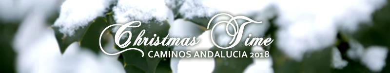 V Concurso de Christmas Caminos Andalucía