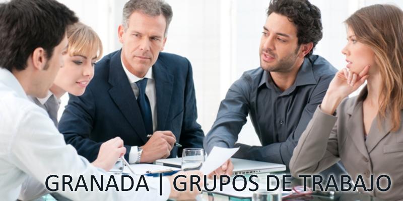 Granada | Reunión Grupos de Trabajo