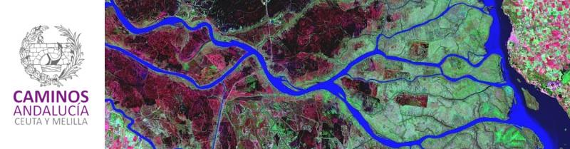 IDidactia. Especialista SIG y Teledetección Aplicado a la Gestión Hidrológica con QGIS · 08 ABR 2019