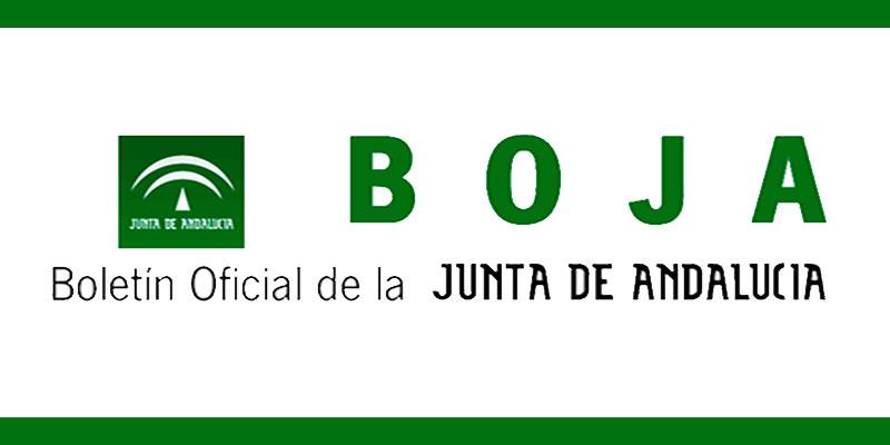La Junta de Andalucía modifica parcialmente la RPT especificando puestos exclusivos para ICCP y algunos compartidos con otras titulaciones