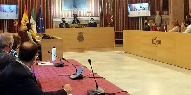 El Colegio lleva las propuestas al PMUS de Sevilla aprobado con amplio consenso político y social